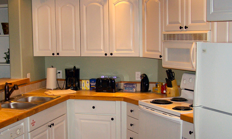 White Oak Condo Kitchen